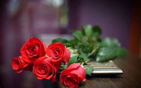 regala fiori mazzo di fiori regalare fiori quando regalare mazzi di