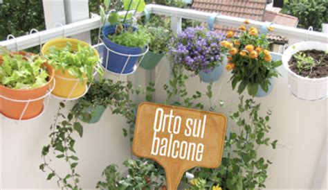 orto in terrazza come fare come fare un orto sul balcone