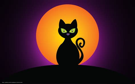 imagenes en negro de halloween descargar gratis gato negro de halloween luna fondos de