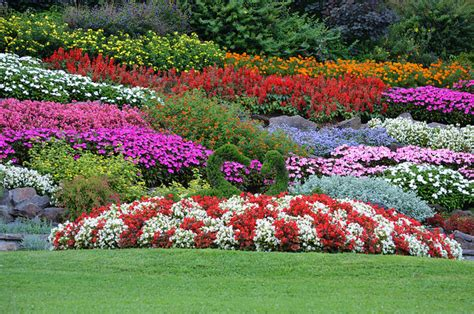 garden state flower market top 12 most beautiful gardens of italy