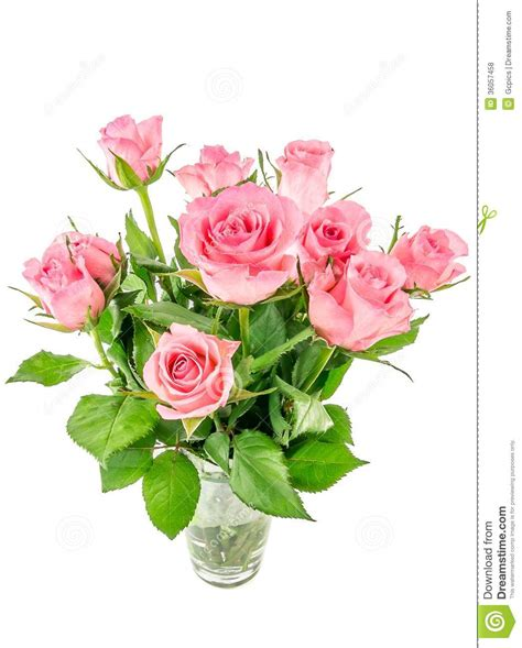 Pink Roses In A Vase by Pink Roses In A Vase Royalty Free Stock Photos Image