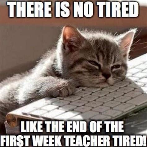 Tired Meme Face - exhausted meme face www pixshark com images galleries