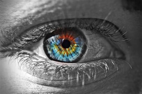 imagenes wallpapers de ojos 191 cu 225 l es la resoluci 243 n del ojo humano
