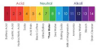 ph scale colors sciencelanguagegallery ks3 acids and alkalis