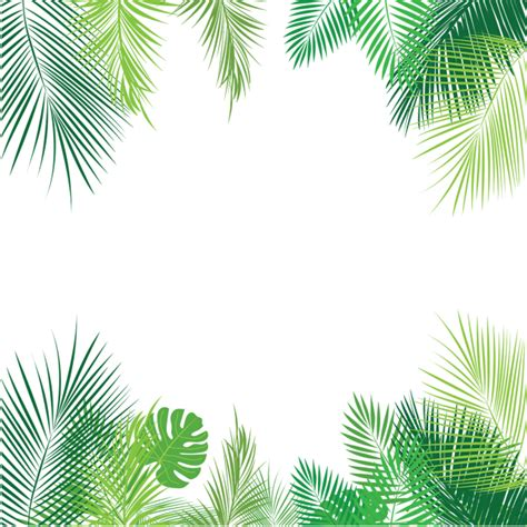 tropical pattern png tropical palm bl 228 tter png palm tropische bl 228 tter