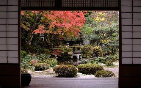 japanese garden in autumn pictures photos and images for facebook tumblr pinterest and twitter