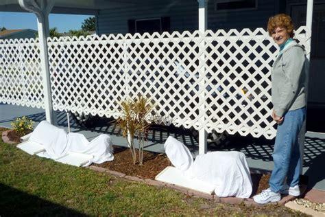 lattice fencecarport wall  hide neighbors carport