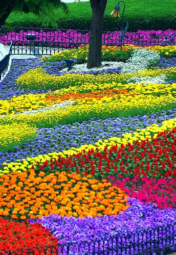 a flower garden flower garden pictures pictures of beautiful flower gardens