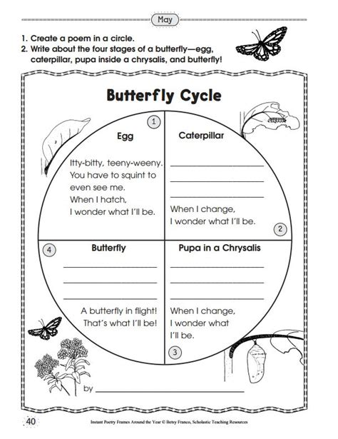 cycle of a butterfly worksheets for 2nd grade 33 best ideas about cycle butterfly on