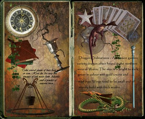 if i were a wizard books wizard s book by scarlettletters on deviantart