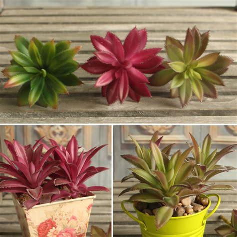 colorful plants succulent grass artificial plant