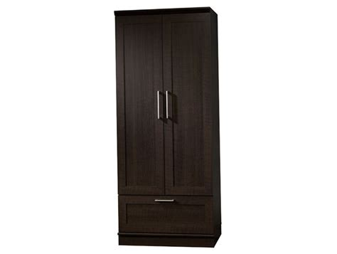 Sauder Cabinet With Doors Sauder Homeplus Storage Cabinet With Oak Finish Home Design Ideas
