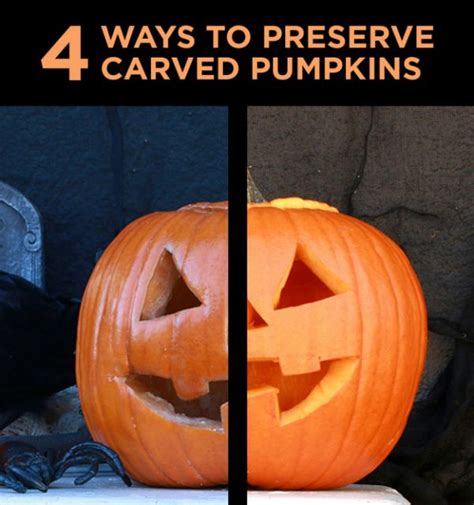 4 ways to preserve carved pumpkins neatorama