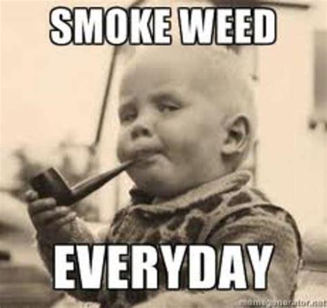 Smoke Weed Everyday Meme - image 288760 smoke weed everyday know your meme