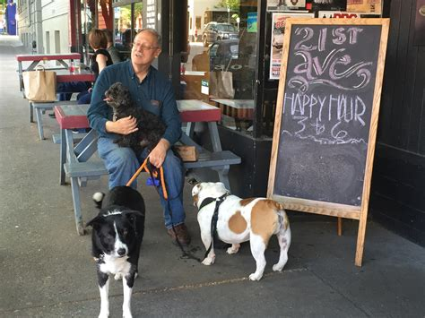 puppies portland pet friendly portland home sweet home realty