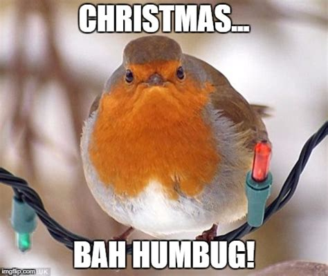 Bah Humbug Meme - bah humbug latest memes imgflip
