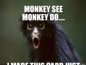 Monkey Meme Generator - shocked monkey monkey see monkey do i made this card