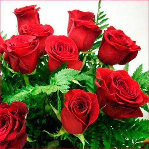 imagenes de rosas rojas hermosas rosas rojas la casita de alicia gabitos