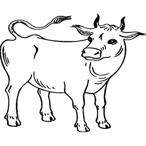 imagenes para colorear vaca dibujo de una vaca para colorear e imprimir