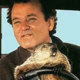 groundhog day uhd groundhog day details and cover thehdroom