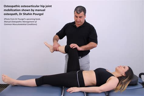 Joint Phd Mba by Image Gallery Hip Joint Mobilizations