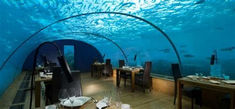 ithaa undersea restaurant prices five beautiful and unique dining places in the world