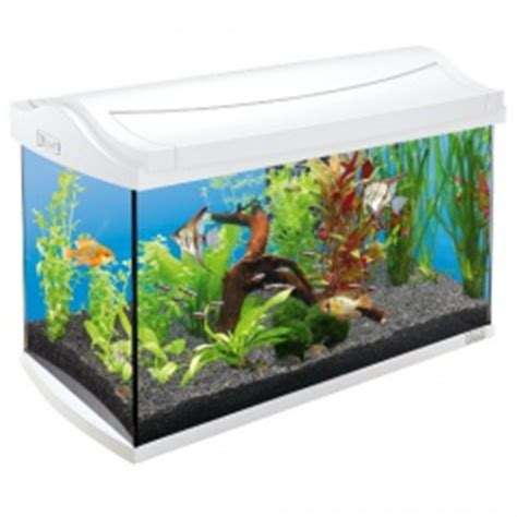 ciano aquarium design zeneo obsession 30l aquarium 224 bettas ciano betta life tiendanimal