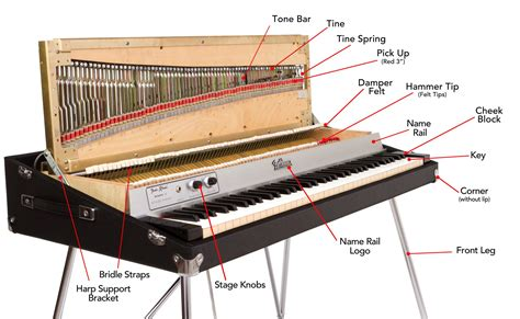 inside a piano diagram fender piano diagram vintage vibe