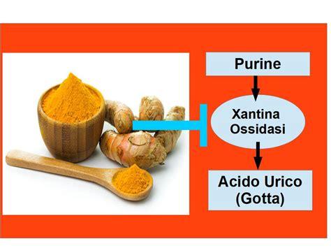alimentazione per acido urico la curcuma artrosi e acido urico alimentazione e