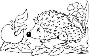 hedgehog coloring pages hedgehog activities word puzzles hedgehog