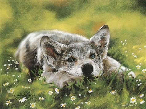 free animal painting graceful animal best animals paintings