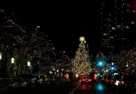 downtown fort worth christmas tree photo cindi smith