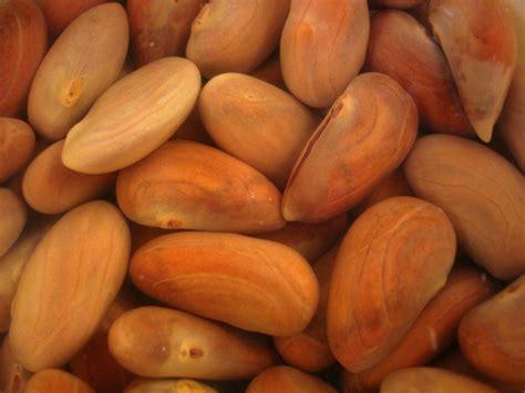 imagenes de jackfruit semilla