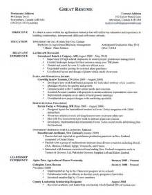what does a resume look like best business template