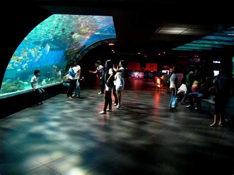 theme park in manila manila ocean park theme park in manila thousand wonders
