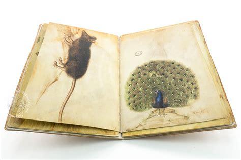 sketchbook x sketch book of giovannino de grassi 171 facsimile edition