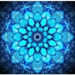 Lotus Sanskrit Sanskrit Symbol Lotus Flower Padma Photos Polyvore
