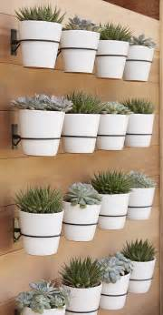 wall planter hooks from crate barrel decoist