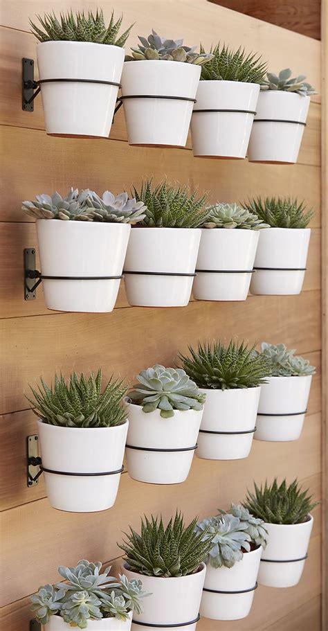 Wall Planter Hooks From Crate Barrel Decoist Wall Planter Hook