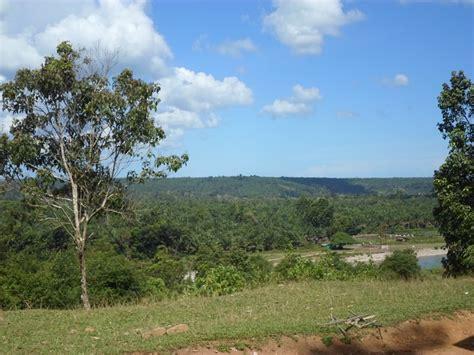 Pokok Pokok Pemerintahan Di Daerah melihat jejak kehancuran hutan seblat tempat hidup si bona