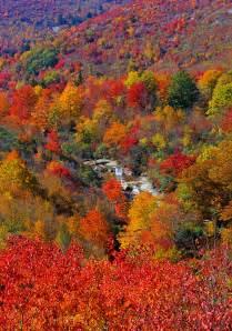 blue ridge parkway fall colors stunning fall color along the blue ridge parkway in