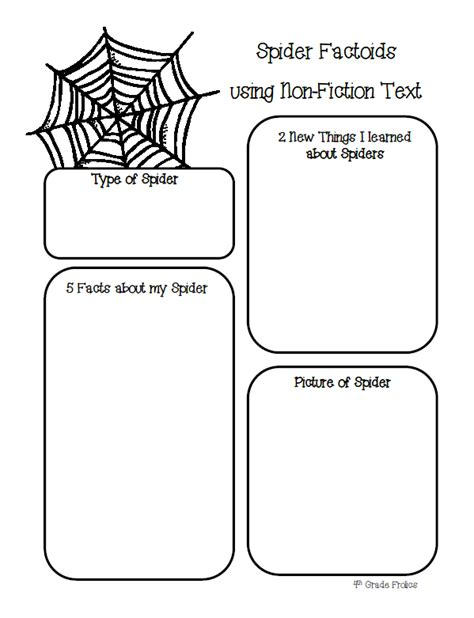 spider report organizer the itsy bitsy spider crawled up mrs eiken s arm