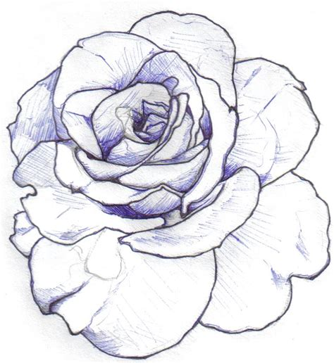rose tattoo outline designs 301 moved permanently