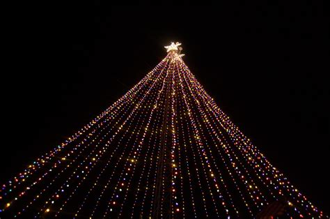 trail of lights may be gone but zilker tree will stay kut