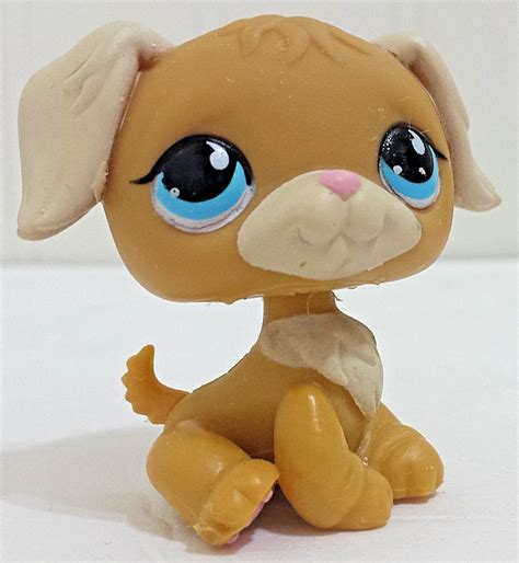 lps golden retriever lps 71 kitten cat orange white blue shorthair littlest pet shop what
