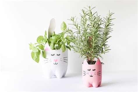Diy Planters diy soda bottle kitty cat planters salty canary