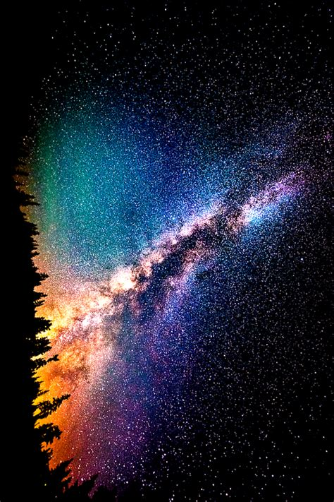 cool tree stars light cool beautiful sky wonderful trees galaxy wow nature