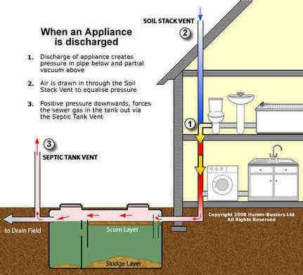 septic tank odor in bathroom sewage smell in bathroom home design