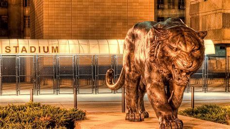 wallpaper  city statue tiger metal
