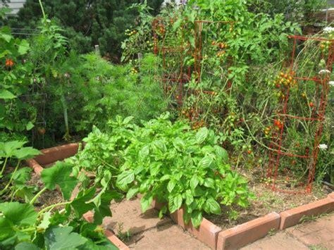 Tomaten Selbst Z Chten 5195 by Garten Selbst Gestalten Ist Gar Nicht So Kompliziert